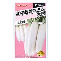 タネのタキイ 年中栽培できる大根 三太郎