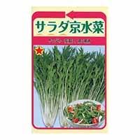 サラダ京水菜