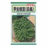 早生枝豆(徳用)