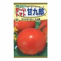 【数量限定】F1 甘〜いトマト甘九郎