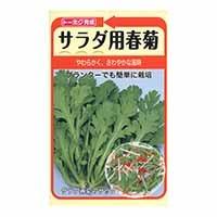 トーホク サラダ用春菊