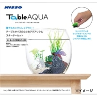【ネット限定・数量限定】テーブルアクア ドラムポットセット