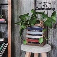 木工キット トールウッドBOX