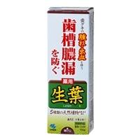 小林製薬 薬用歯みがき 生葉(しょうよう) 100g