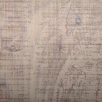 【SU】リアルプリント Wベニヤ 910×1820×5.5