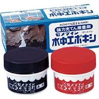 【CAINZ DASH】セメダイン 水中エポキシ 100gセット CA−152
