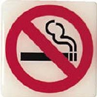 【CAINZ DASH】光 ルミノーバ蓄光サイン禁煙マーク