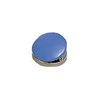 【CAINZ DASH】サンケー カラーマグネットクリップ 小 30mm  (20個入)
