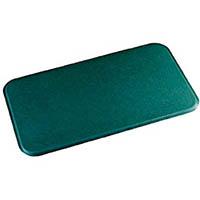 【CAINZ DASH】テラモト スタンディングマット 緑