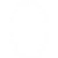 【CAINZ DASH】光 小判札ホワイト1PK(5枚入)