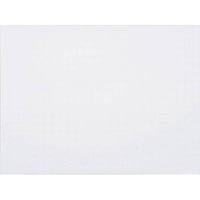 【CAINZ DASH】マグエックス 暗線ホワイトボードシート(小)