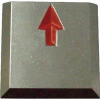 【CAINZ DASH】TRUSCO クリアーライン 貼付式 5枚入