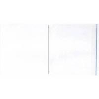 【CAINZ DASH】パピルス デリバリーパックポケットタイプ(長3封筒サイズ用) (100枚入)