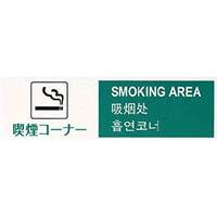 【CAINZ DASH】光 多国語プレート 喫煙コーナー