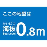 【CAINZ DASH】TRUSCO 海抜ステッカー 0.8m (2枚入)