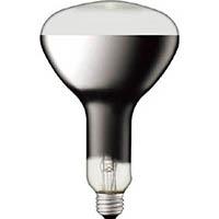 【CAINZ DASH】岩崎 水銀ランプ反射形100W